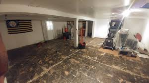 mold control services llc college park md