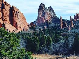 northwest colorado springs apartments for rent with hardwood