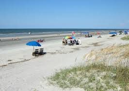 south forest beach vacation rentals u2022 resort rentals of hilton head