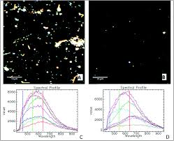 evaluation of enhanced darkfield microscopy and hyperspectral