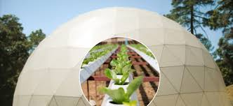 best geodesic greenhouses dome greenhouse kits for sale