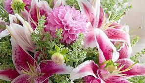 stargazer bouquet stargazer and dahlia bouquet p allen smith garden home