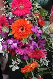 Walmart Wedding Flowers - pink gerbera daisies are fresh fun and cheerful wedding