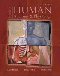 Human Anatomy And Physiology 8th Edition Holes Human Anatomy And Physiology 12th Edition Periodic Tables