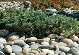 Lava Rock Garden Walmart Landscape Rocks Garden Rocks Landscape Rocks And Stones