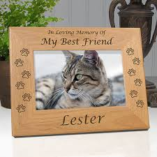 personalized cat gifts personalized cat picture frame engraved with your cats name cat