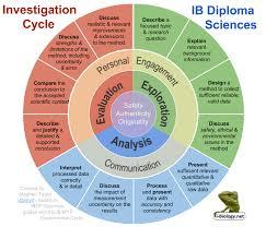 design lab ib biology exle investigation cycle ia checklist i biology