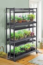 shop light for growing plants if you ve tried starting seeds under shop lights you ll be