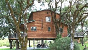 Best Treehouse Best Biggest Tree House Design Best House Design Build A Biggest