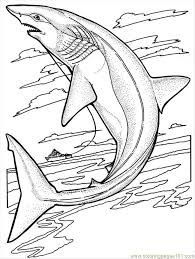 sharks coloring pages sharks coloring page free shark coloring pages