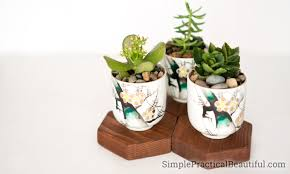 Succulent Planter 10 Succulent Planter Ideas Simple Practical Beautiful