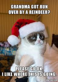 Grumpy Cat No Meme - grumpy cat hates christmas funny meme funny memes