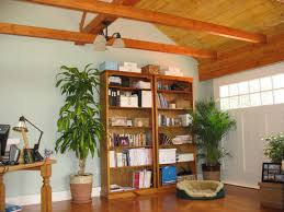 garage ideas insulating tin roof view images arafen