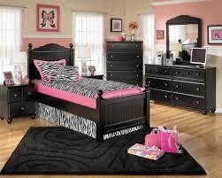 Pink Zebra Bedroom Designs Bedroom Exquisite Bedroom Decoration Using Houston Furniture With