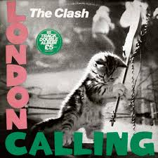 cat photo album 28 kittens on album covers nme