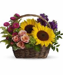 sunflower arrangements brighten your day with sunflowers allen s flowers