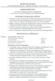 professional summary resume resume synopsis exle misanmartindelosandes