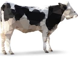 how science will make cows obsolete popular science