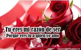 bonitas de rosas rojas con frases de amor imagenes de amor facebook preciosas imágenes de amor con ramos de rosas rojas