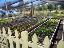 Vegetable Garden Restaurant by Field Trip Vegetables Herbs Trees Food And Cotton