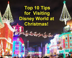 top tips for disney world at build a better mouse trip
