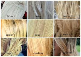 Types Of Hair Colour by Ash Hair Color Chart Toreto Co
