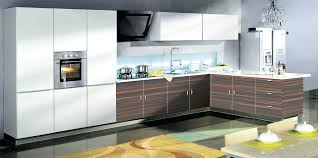 Acrylic Cabinet Doors Gallery Of Acrylic Kitchen Cabinets Magnificent For Interior