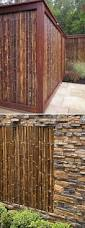 Bamboo Home Design Pictures by Best 25 Bamboo Ideas On Pinterest Bamboo Ideas Bamboo Design
