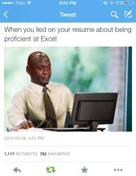What Is A Meme Exle - when you lied on your resume about being proficient at excel memes