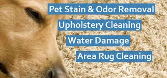 upholstery cleaning mesa az carpet cleaning mesa az stero carpet cleaning