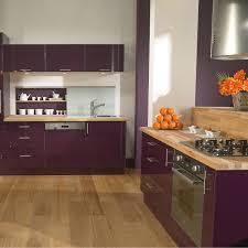 electromenager pour cuisine meuble de cuisine delinia position type aubergine violet avec