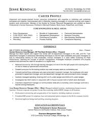 Sample Resume Of Network Engineer Ccna Resume Sample Resume Cv Cover Letter