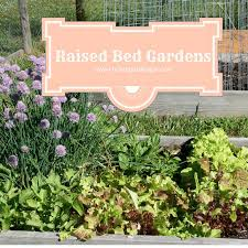 How To Make A Raised Bed Vegetable Garden - how to plan a raised bed vegetable garden u2013 home garden joy