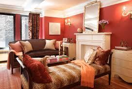 Leopard Print Rug Living Room Furniture Traditional Living Room With Leopard Print Living Room