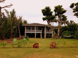 haena beach honeymoon suite kauai hawaii maptrotting