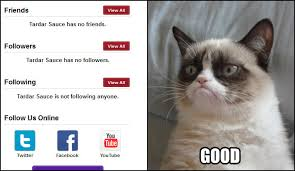 Angry Cat Good Meme - tardar no mates grumpy cat know your meme