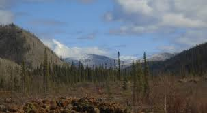 Teh Yakon placer exploration in the yukon west coast placer