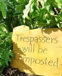 Wacky Garden Ideas Gardening Quotes To Brighten Your Day Gardens And Garden Ideas