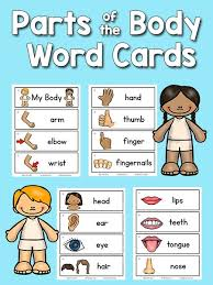 best 25 body parts preschool ideas on pinterest parts of the