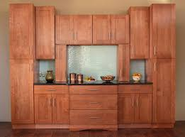 Kitchen Cabinet Door Types Minimalist Shaker Style Kitchen Cabinets Idea Cathedral Cabinet