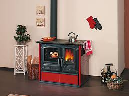 Pot Belly Stove With Glass Door by Image Detail For Wood Stove To Natural Gas Napoleon Wood