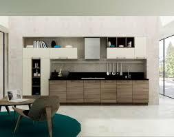 Best Kitchen Cabinet Hinges Kitchen Pretty Kitchen Cabinets Cream White Terrifying Kitchen