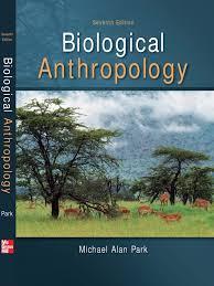 anthropology anthropology evolution