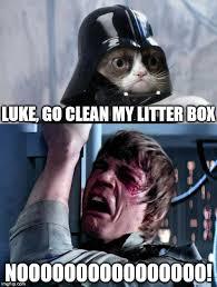 Grumpy Cat Meme Clean - grumpy cat star wars no imgflip
