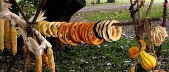 manyhoops pumpkin