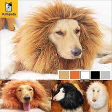 afghan hound creepy online buy wholesale cat head costume from china cat head costume