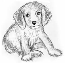 dog color pages printable print more coloring pages at www