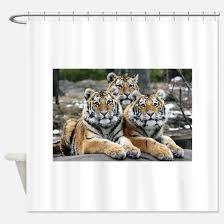 Animal Shower Curtains Animals Shower Curtains Cafepress
