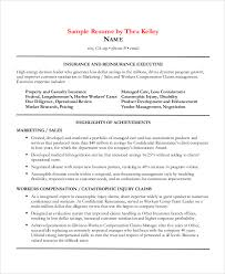 marketing sales resume 41 sales resume templates free u0026 premium templates
