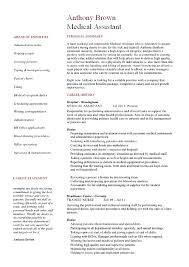 resume summary statement resume summary examples resume